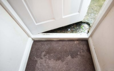 Here's How To Clean Carpets, Rugs and Upholstery After Flooding