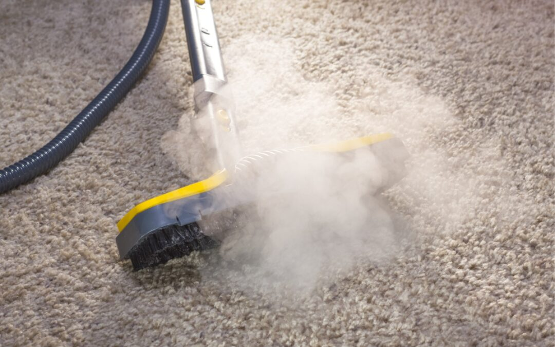 Suffering Seasonal Allergies? Carpet, Rug, and Upholstery Cleaning Can Help