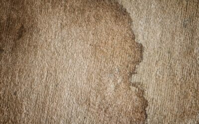 Don't Panic! Here's How to Use Carpet Cleaning to Remove Tough Stains