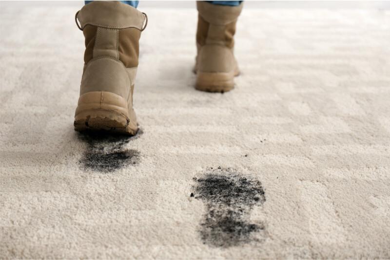 winter carpet care