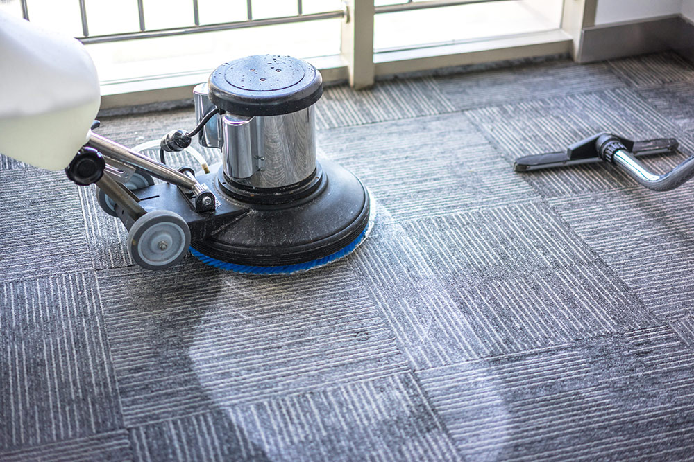 How to Choose the Right Carpet Cleaners